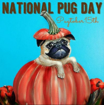 Happy National Pug Day