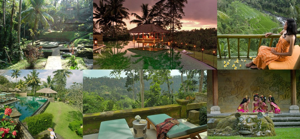 Several gorgeous scenes from our chicest vacation Ubud, Bali, Indonesia.