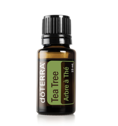 #DO0076 Tea Tree / Arbre à thé 15 ml