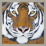 """TIGER GAZE"" Art Print-Framed- Plaque"