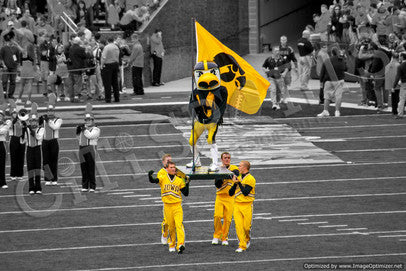 iowa hawkeyes herky photo