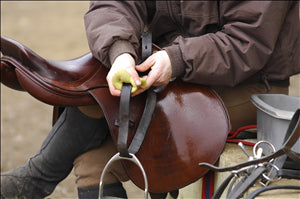 cleaning tack