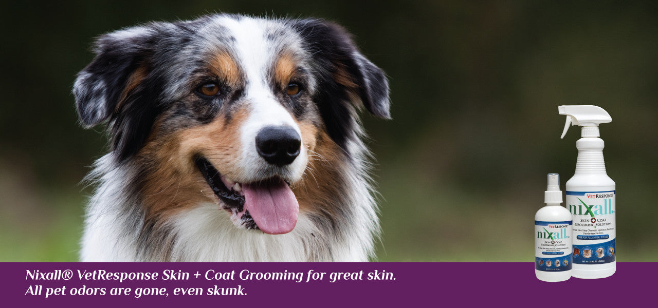 Nixall VetResponse® Skin Coat Grooming Solution for pets.