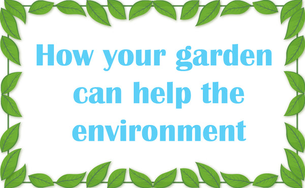 How Your Garden Can Help the Environment