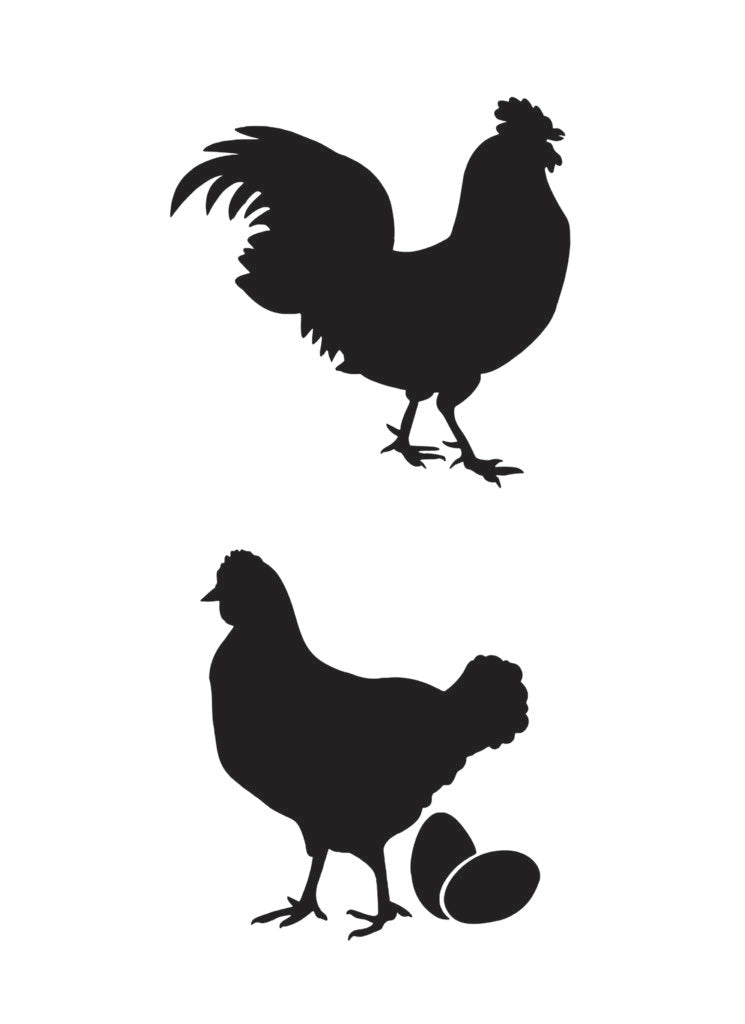 NCS-164 Hen House Duo stencil