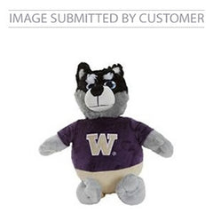 W Raccoon Custom Pinata