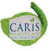 Custom Caris Healthcare Logo Pinata