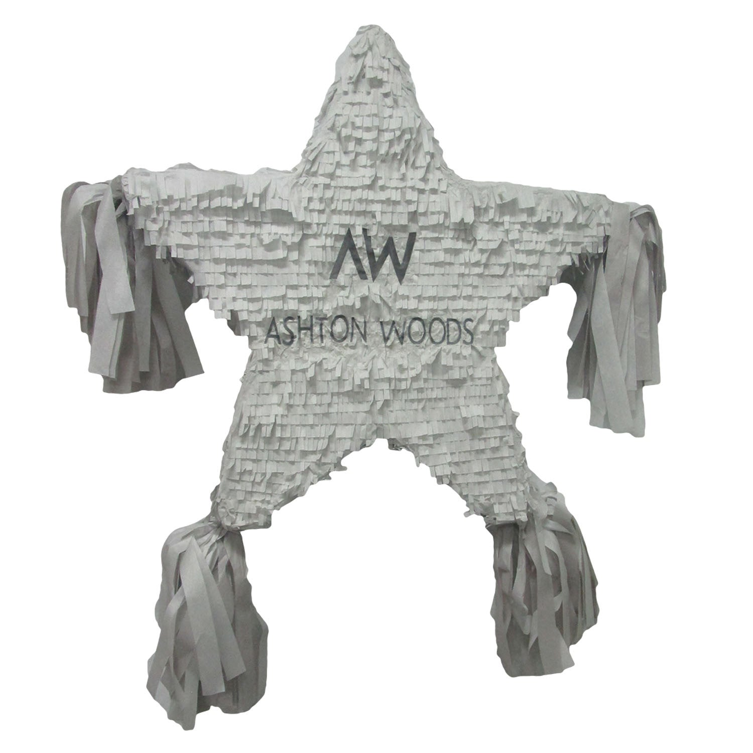 Ashton Woods Star Custom Pinata