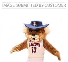 Arizona Mascot Custom Pinata