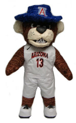 Custom Arizona Mascot Pinata