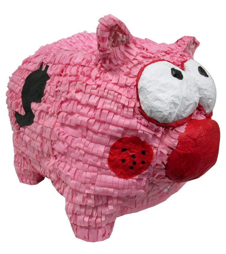 Custom Piggy Bank Pinata