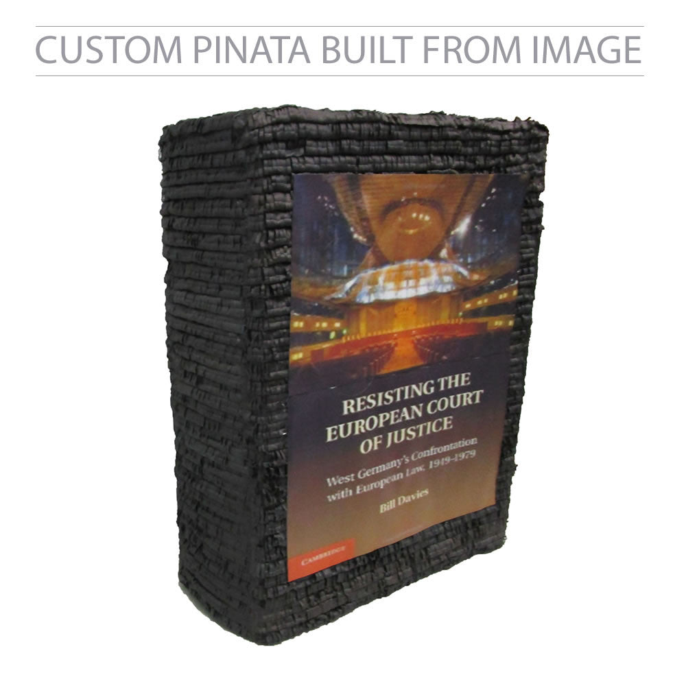 Custom Book Pinata