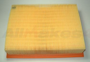 Air Filter Genuine