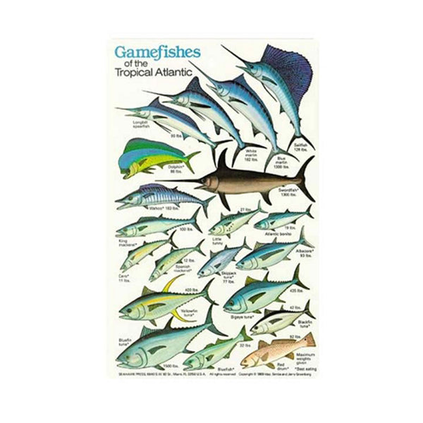 Game Fish- Plastic ID Card