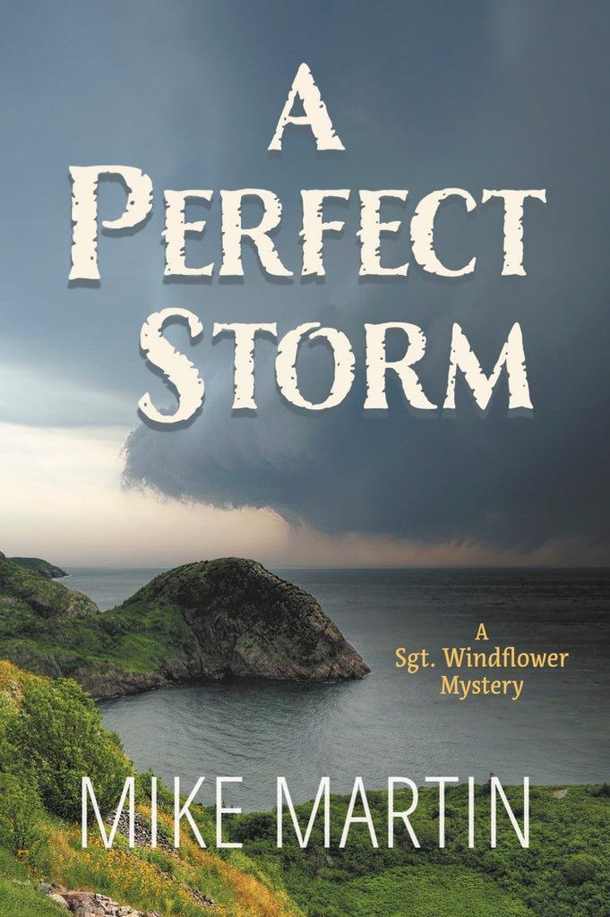 A Perfect Storm by Mike Martin (Print Book)