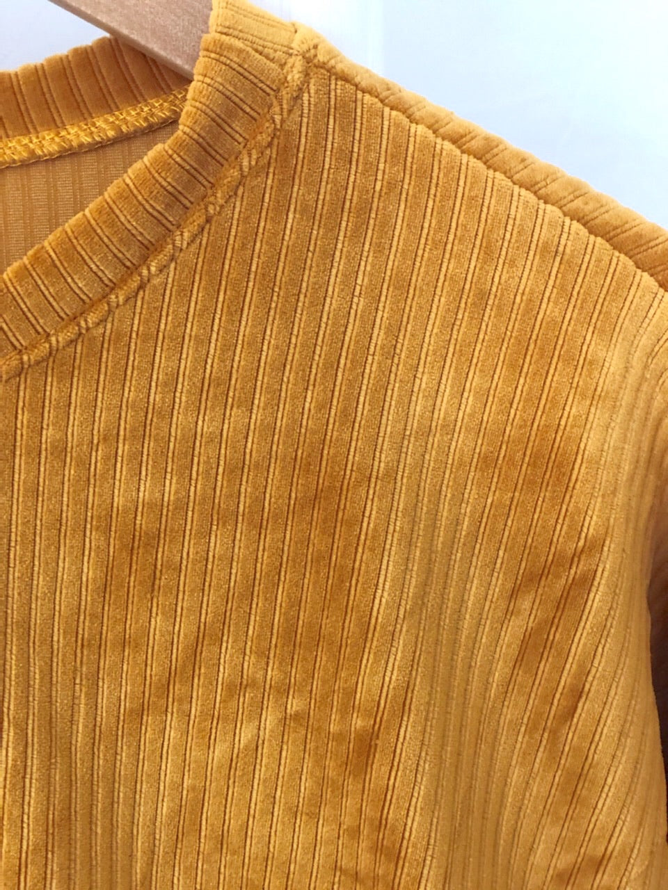 Goldie Velour Top