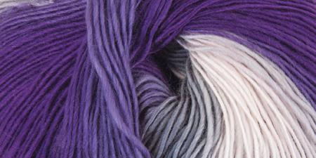 Mary Maxim® Prism Yarn Iris