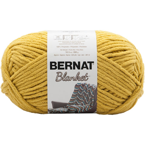 Bernat® Blanket Big Ball Yarn Moss Coastal Collection