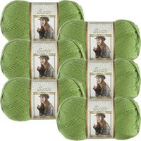 Bernat Satin Solid Yarn-Fern, Multipack Of 6