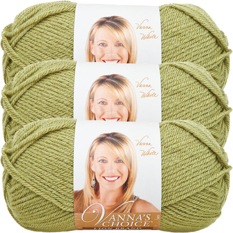 Lion Brand Vanna's Choice Yarn-Dusty Green, Multipack Of 3
