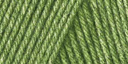 Caron One Pound Yarn Grass Green