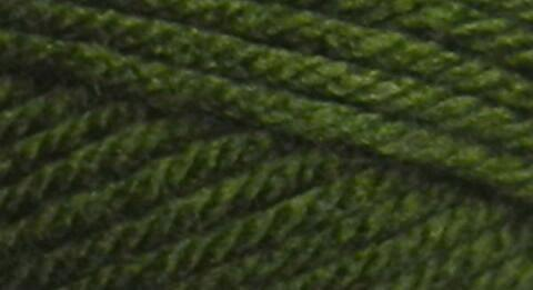 Deborah Norville Collection Everyday Soft Worsted Yarn Pine Green