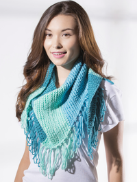 Loopy Fringed Scarf Free Knitting Pattern