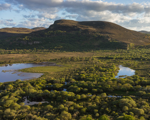 Alder Woods and River Fleet below Creag an Amalaidh from Mound Rock, Sutherland