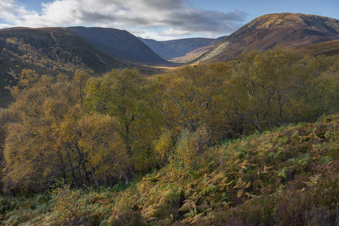A view down the Alladale valley in Glen Alladale, Sutherland, Scotland