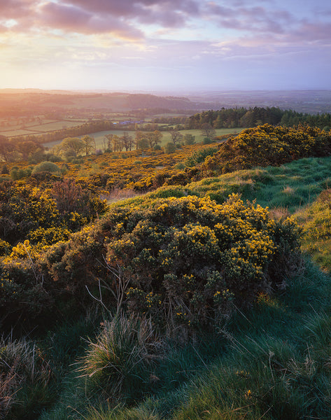 Scottish Borders landscape from The Eildon Hills on a summers dawn