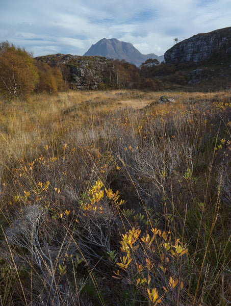 Slioch mountain in Torridon Wester Ross amongst autumn colours