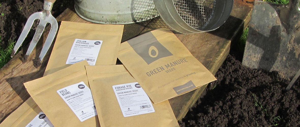 Green Manure Seeds