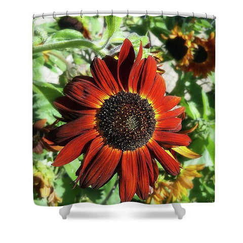 Hearts On Fire Sunflower Shower Curtain