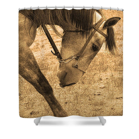 Movement Shower Curtain