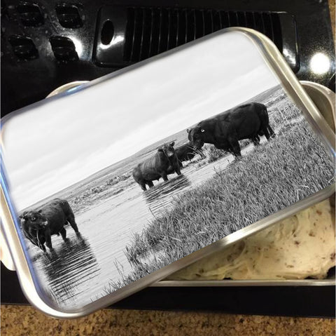 Cattle, Bulls and Livestock Cake Pans