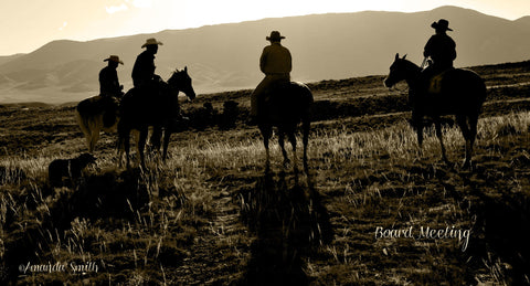 Beartooth River Ranch, Marketing Shoot - Montana