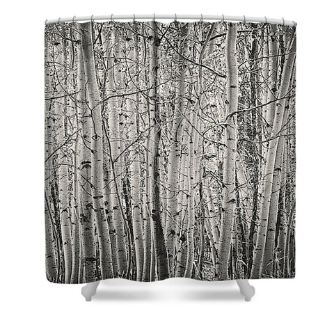 Aspen Illusion Shower Curtain