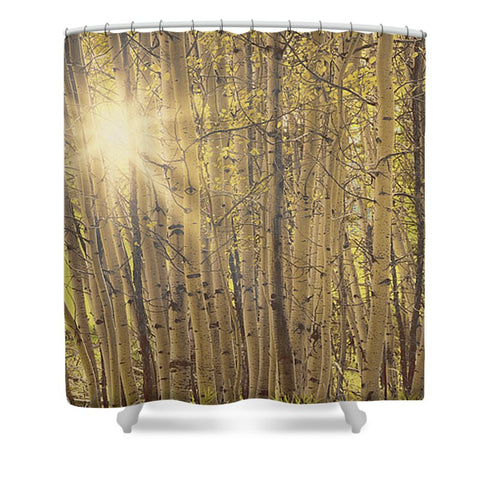 Aspens In Summer Shower Curtain