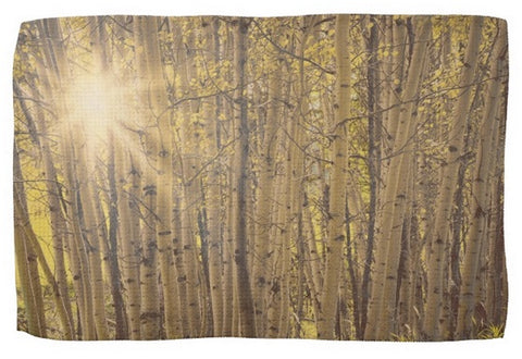 Aspens in Summer Kitchen Towel