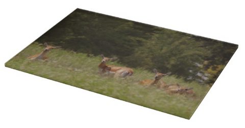 Black Buck Doe in a Row Cutting Board