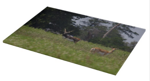 Black Buck and Doe Cutting Board