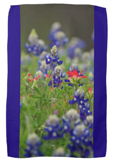 Blue Bonnets and a Paintbrush Kitchen Towel