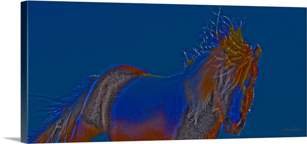 Blue Stallion Canvas Print