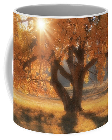 Boxelders Autumn Tree Mug