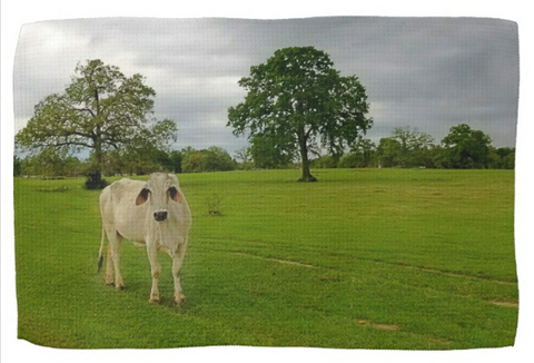 Texas Brahman Mama Kitchen Towel