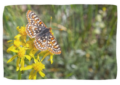 Butterfly in Aspen Kitchen Towel