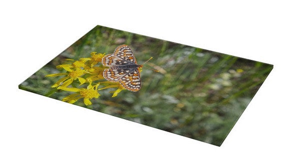 Butterfly in Aspen Cutting Board