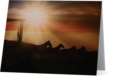 Caballo Sunset Note Cards and Greeting Cards (25 Pack)