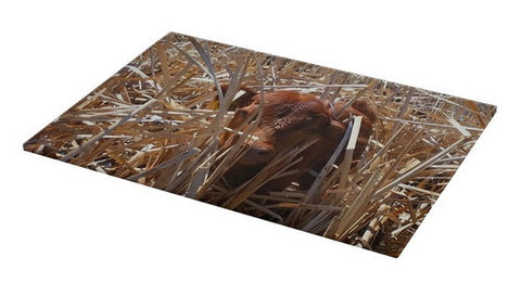 Calftails Cattails Cutting Board