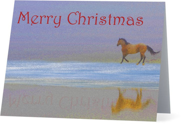 Christmas Reflection Christmas Card (25 Pack)